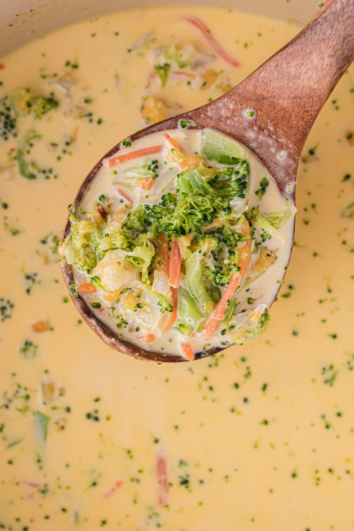 Broccoli cheese soup on ladle.